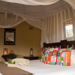 Room at Africa on Foot