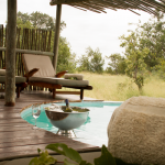 Swimming Pool at Africa on Foot