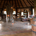 Library and Lounge at Africa on Foot