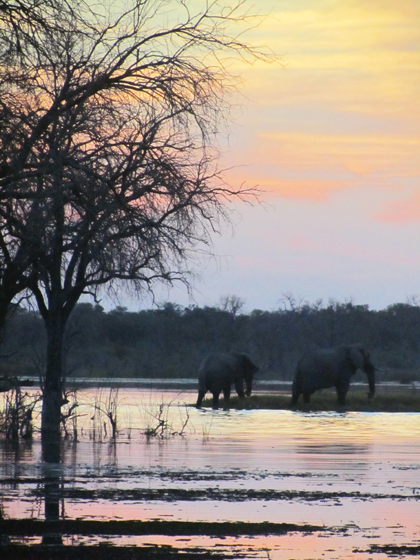Typical Sunset in Botswana