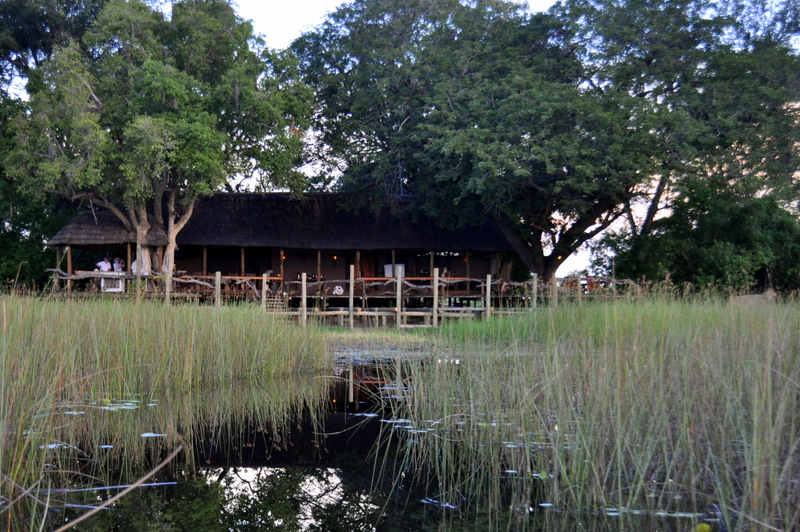 mapula-okavango-lodge