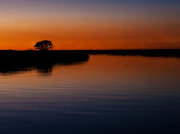 A houseboat safari is quite unlike the experience to be had at permanent game lodges where the hours of game viewing and exploration are confined to morning and evening. Cruising down the world-famous Okavango River in simple style with only the familiar faces of your friends and family creates an experience to remember. The exclusive […]