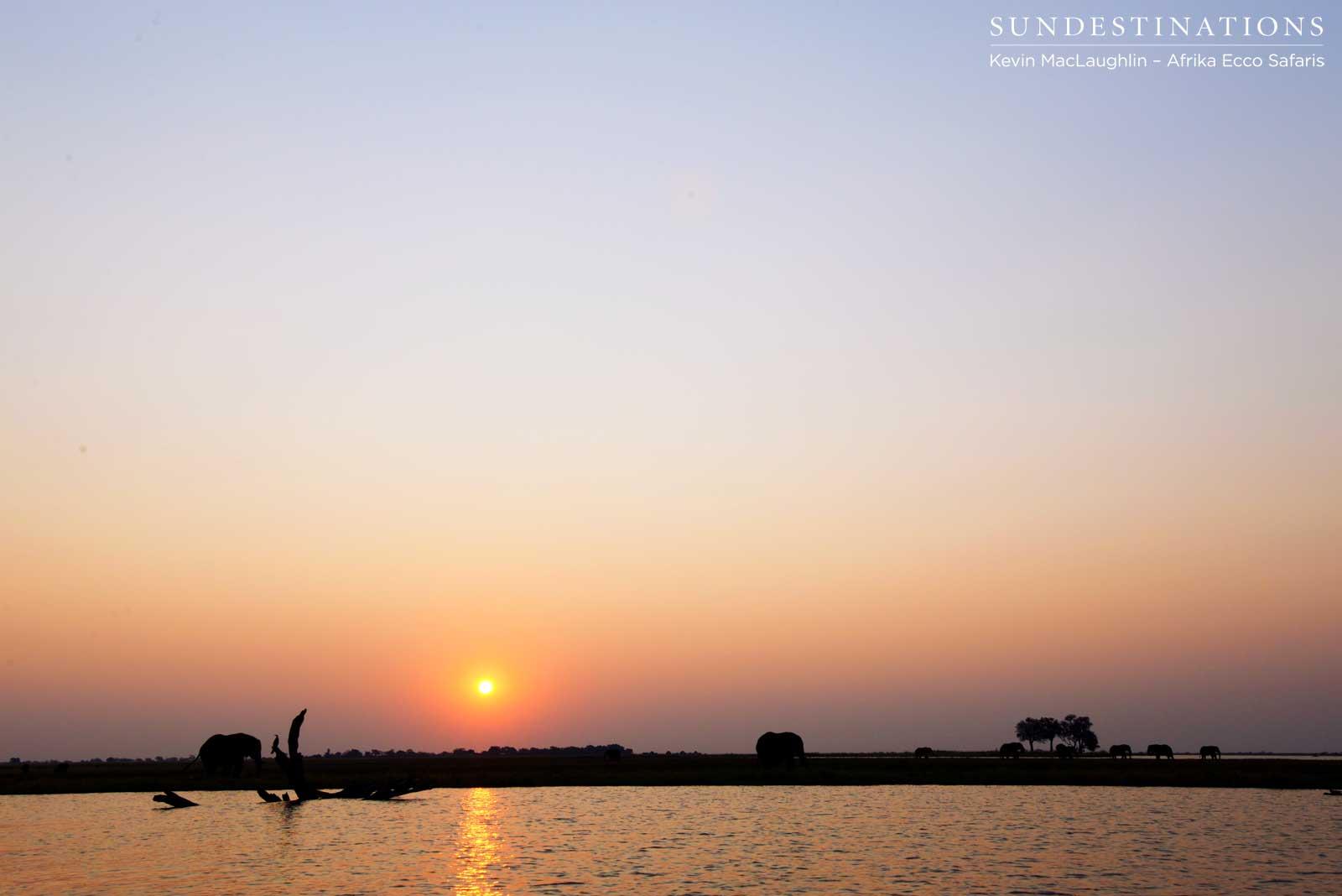 Chobe Riverfront Boat Cruise with Afrika Ecco Safaris