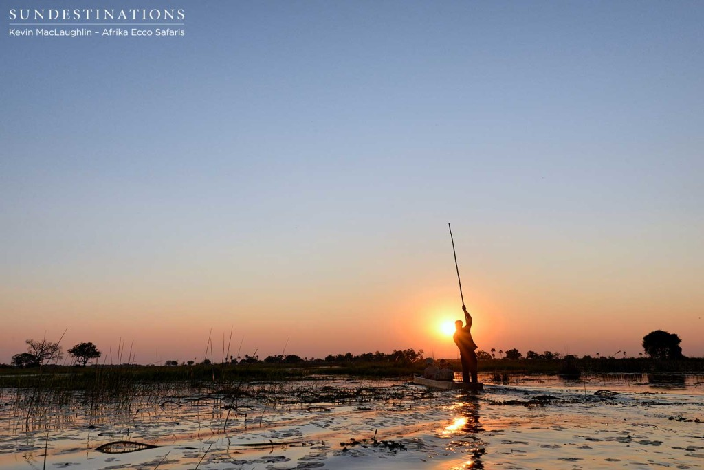 Okavango Delta sunset by mokoro