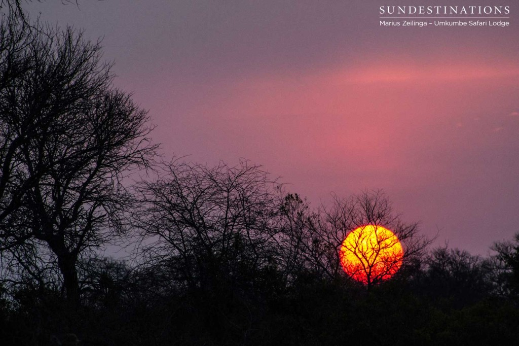 Sunset over the Sabi Sand