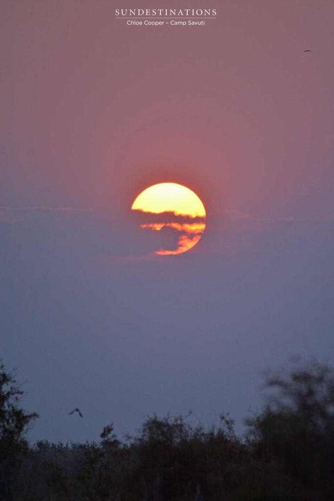 Sunset in Savuti