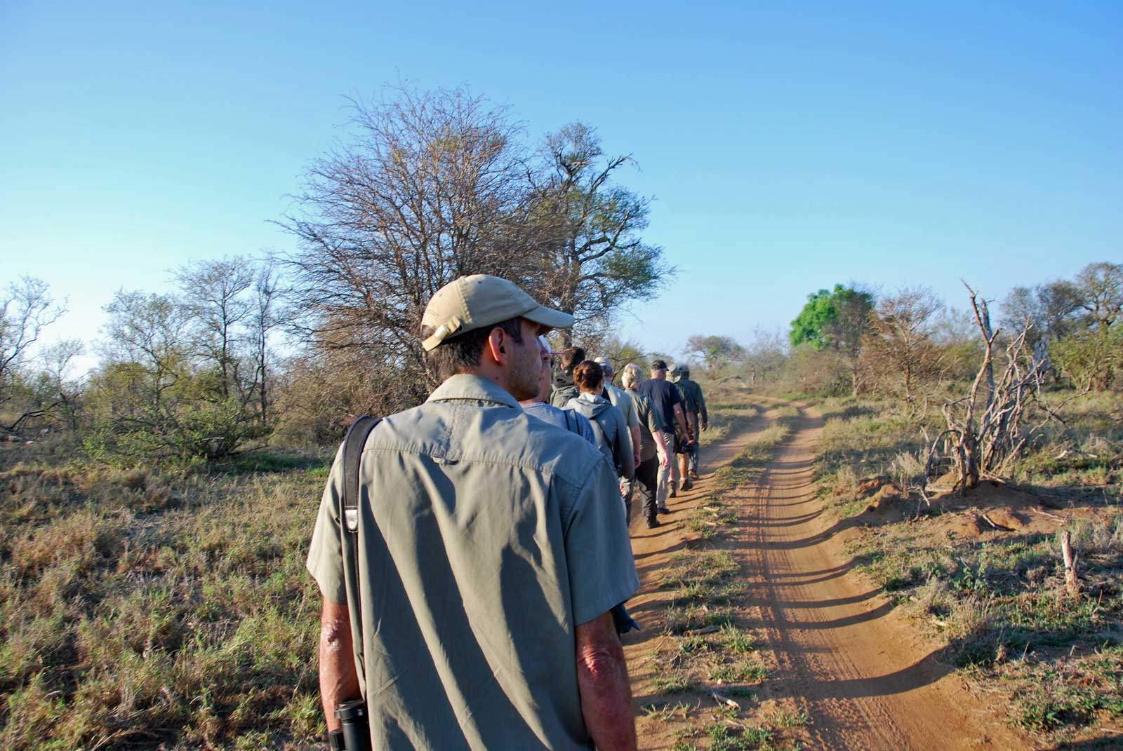 Guest Blog: Africa on Foot and nThambo Tree Camp