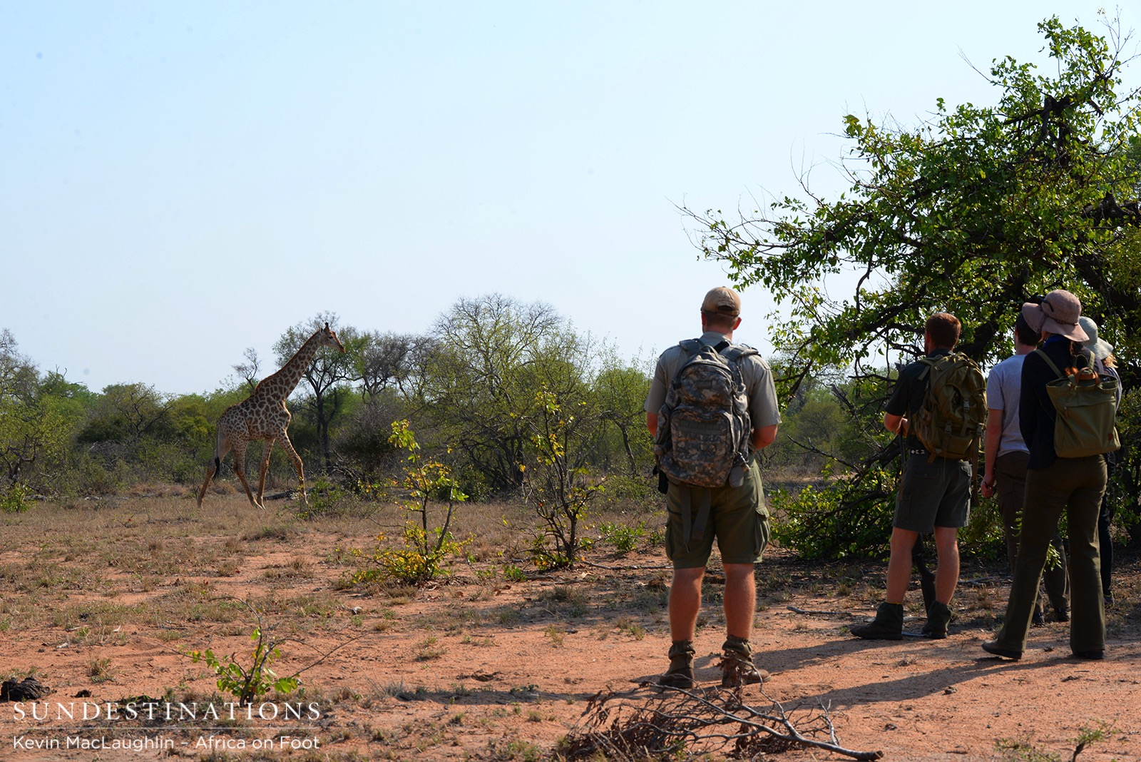 On Foot in the Bush: Africa on Foot Walking Safaris