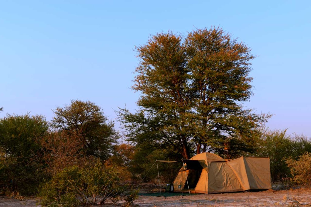 Afrika Ecco Safaris dome tents with canvas en suite bush bathrooms
