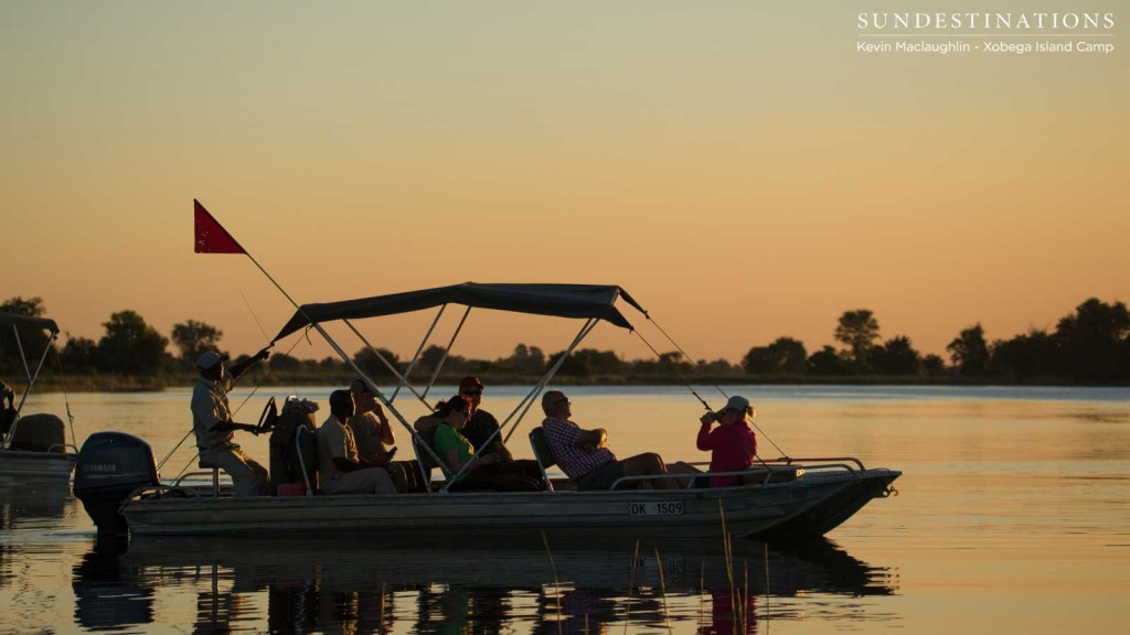 Bobbing gently on the surface of the Delta waters at sunset