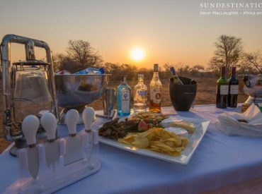 The combination of wine tasting and safari could possibly be the match made in heaven we've all been dreaming about. Packing a cooler box with your refreshment of choice is game drive protocol, but a wine tasting event on safari is nThambo Tree Camp and Africa on Foot's idea of how to watch the sunset! […]