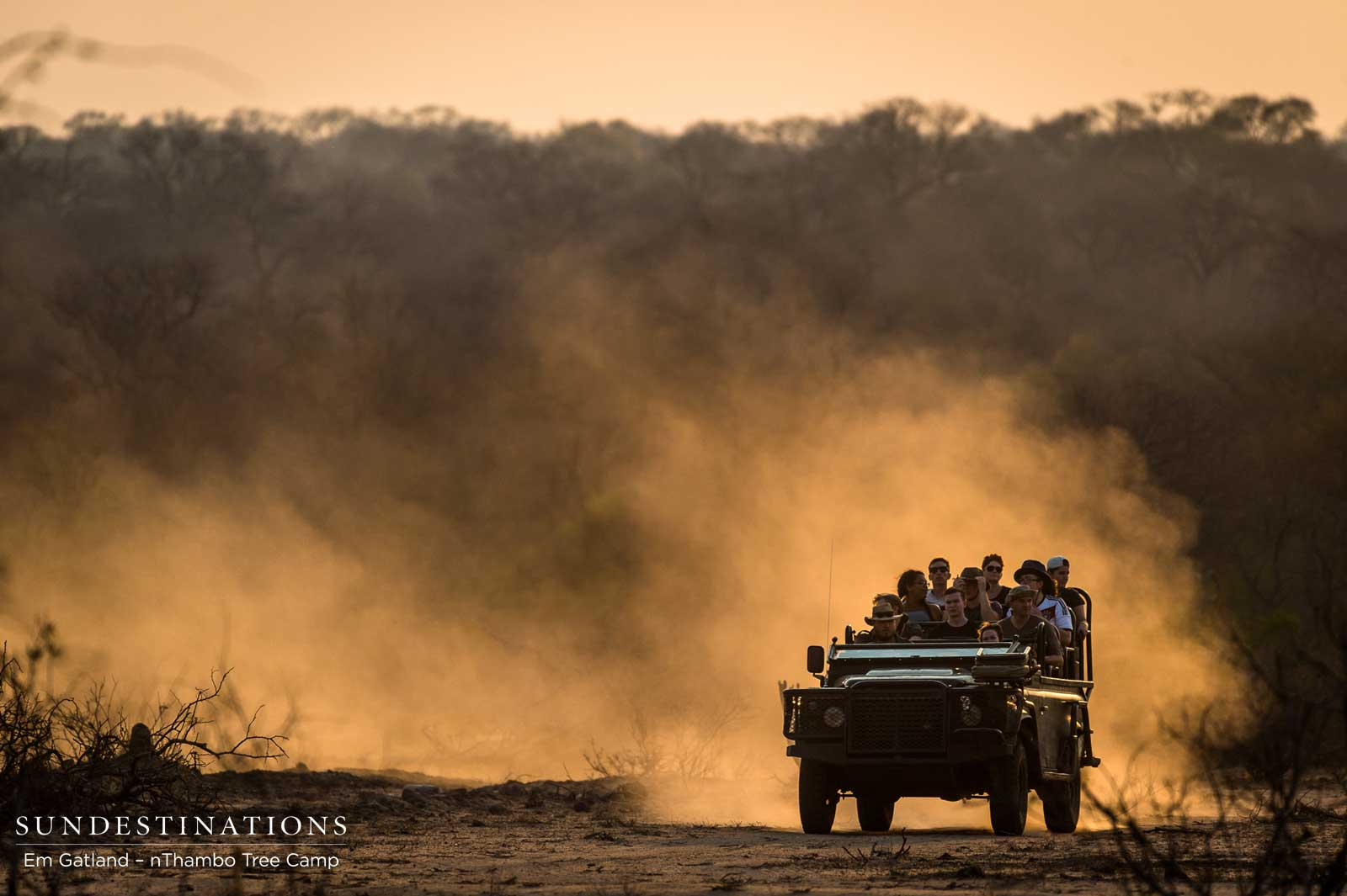 The Bushveld's Version of Poetry in Motion
