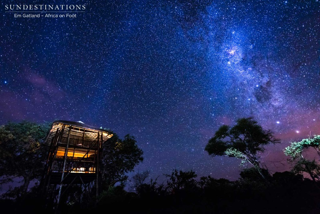 The galactic extravagance of the Milky Way, lighting up the skies above the Treehouse