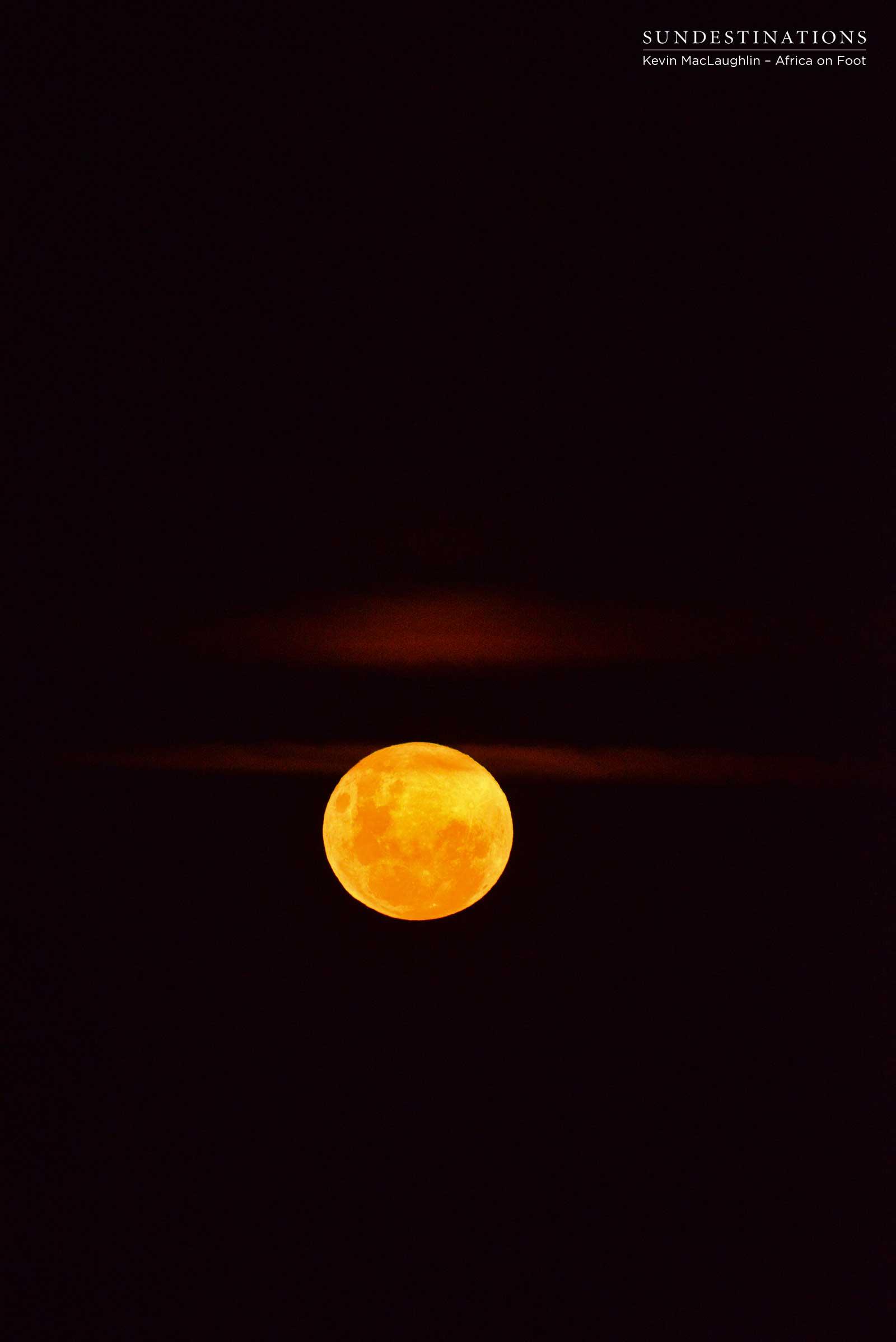 Full Moon Africa on Foot
