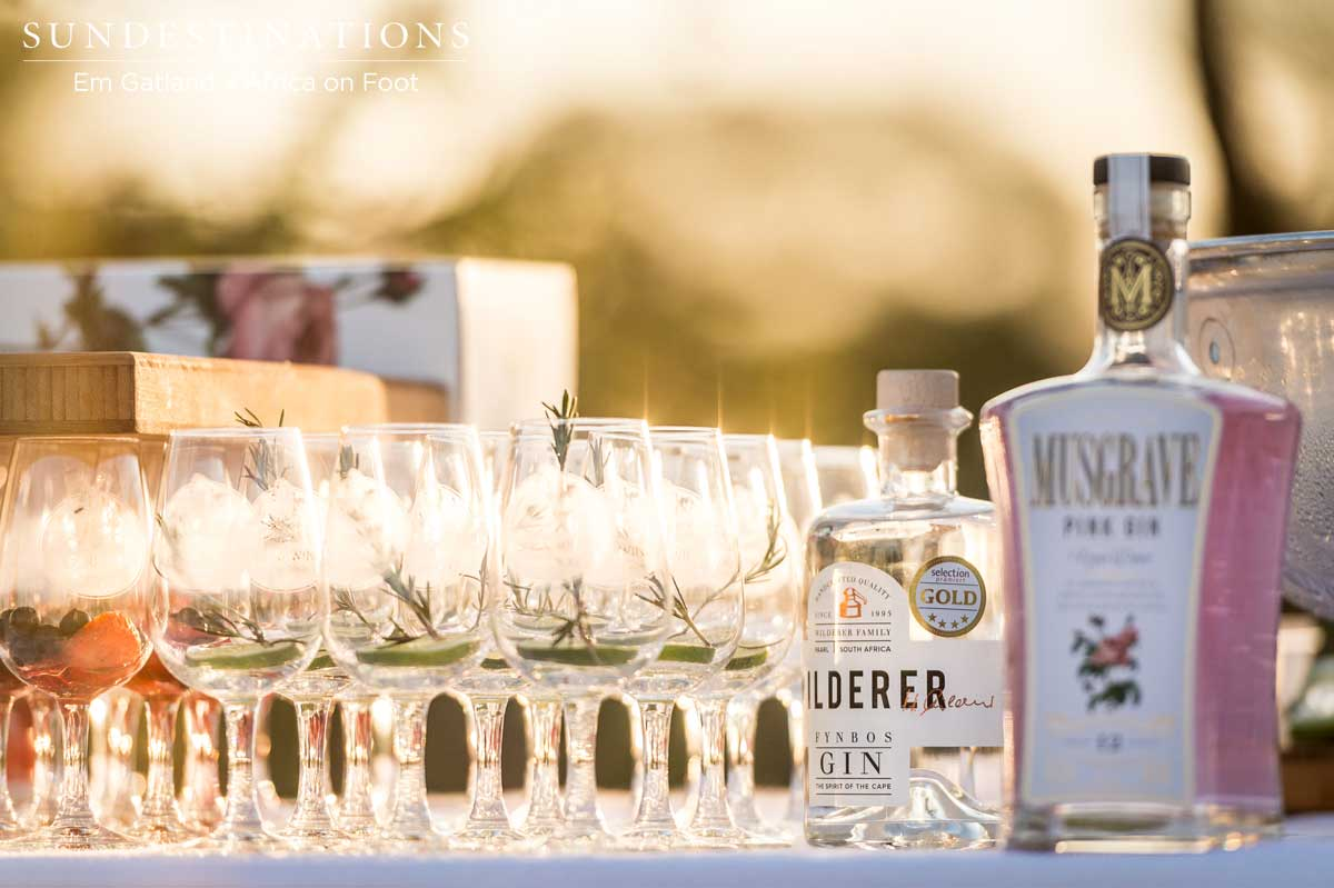 Gin Tasting Africa on Foot