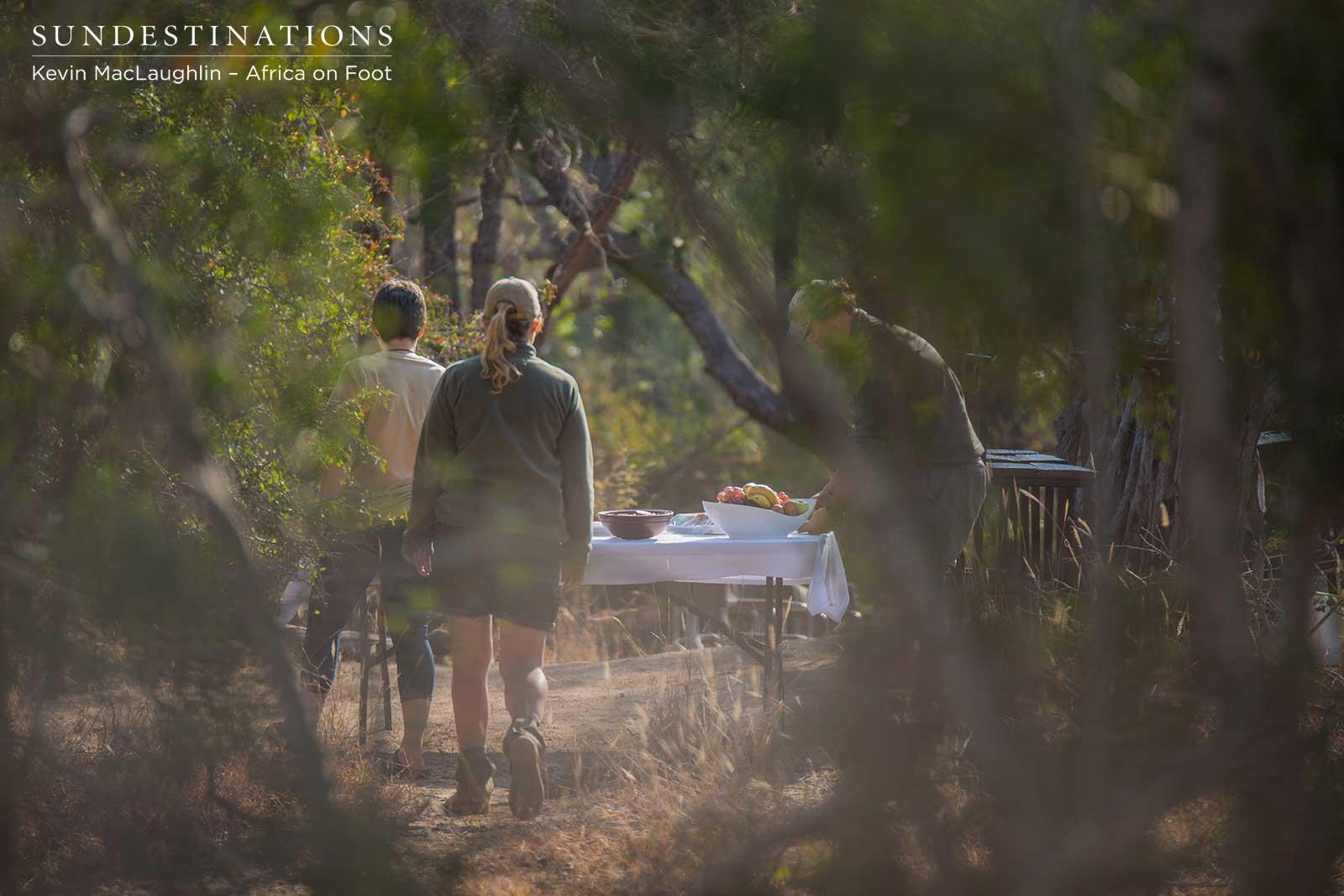 Bushveld Dining in Klaserie