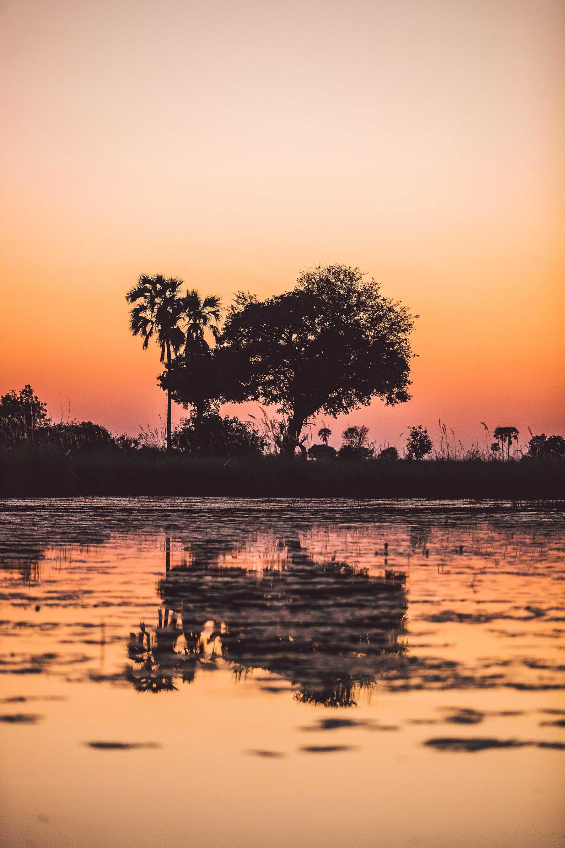 Okavango Delta Waters
