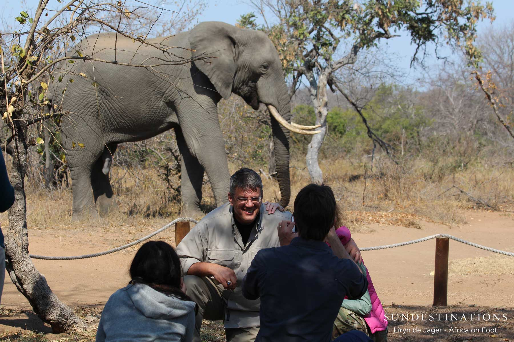 Relief Camp Manager Photographs Elephant at Pool in Camp