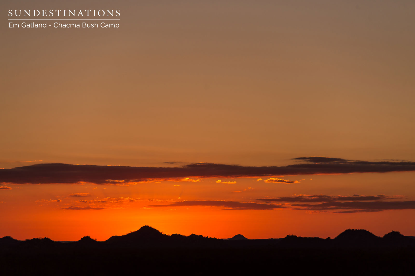 Chacma Sunset Maseke