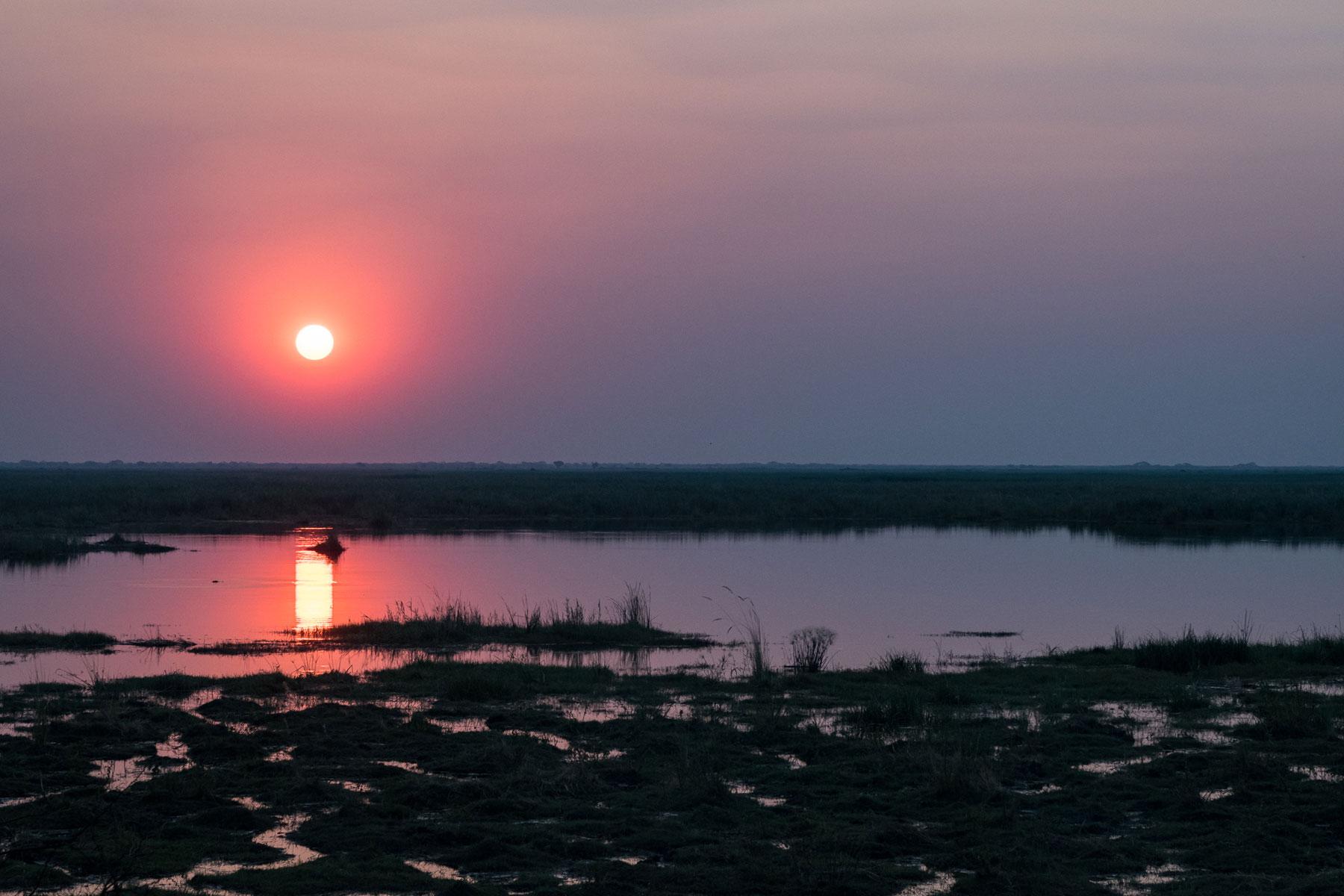 Camp Linyanti Sunset