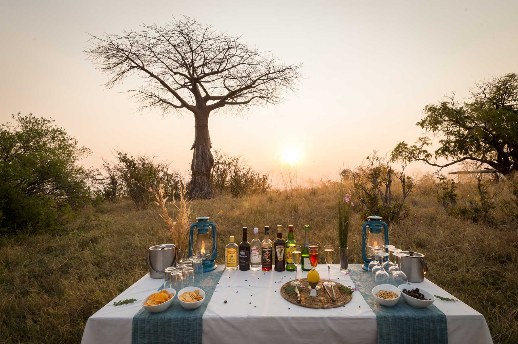 Baobab Sunset Session : Image taken by Em Gatland