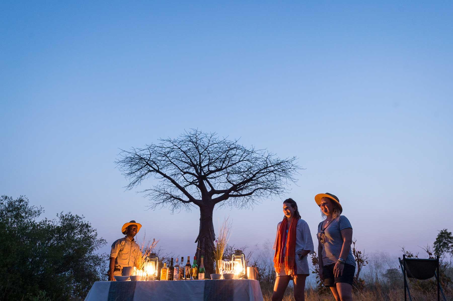 Baobab Sessions : Image by Em Gatland
