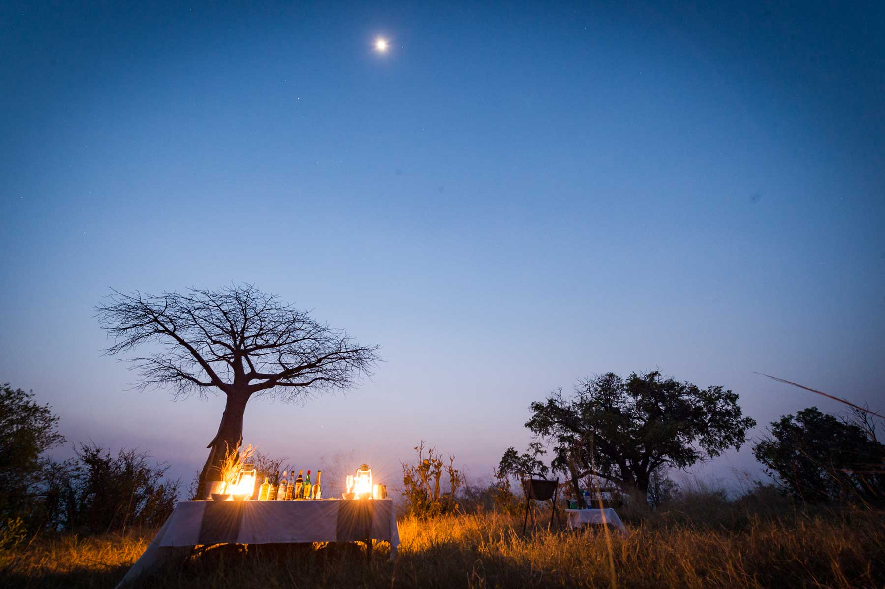 Baobab Motswiri : Image by Em Gatland