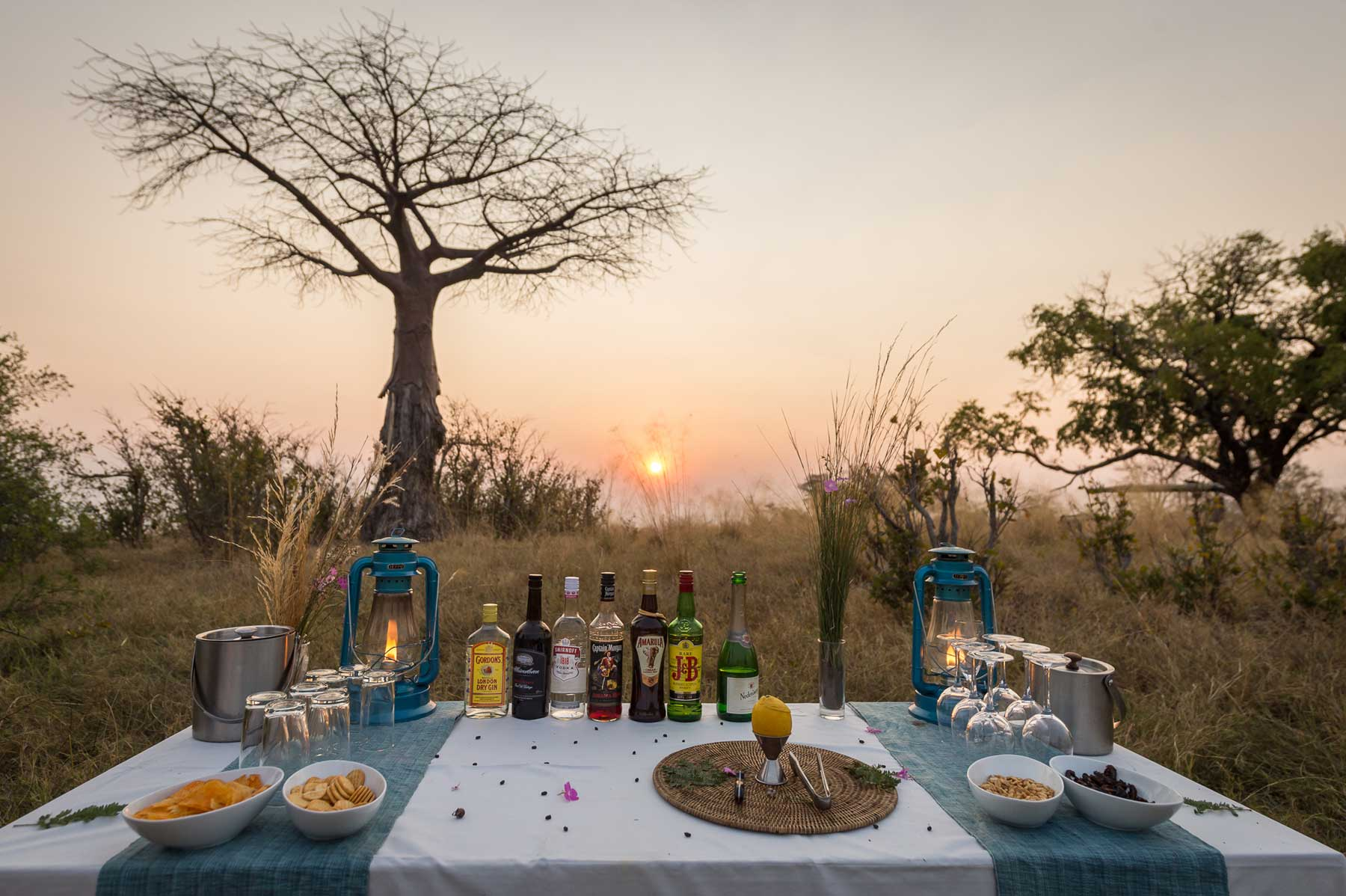 Baobab Tree Sundowners