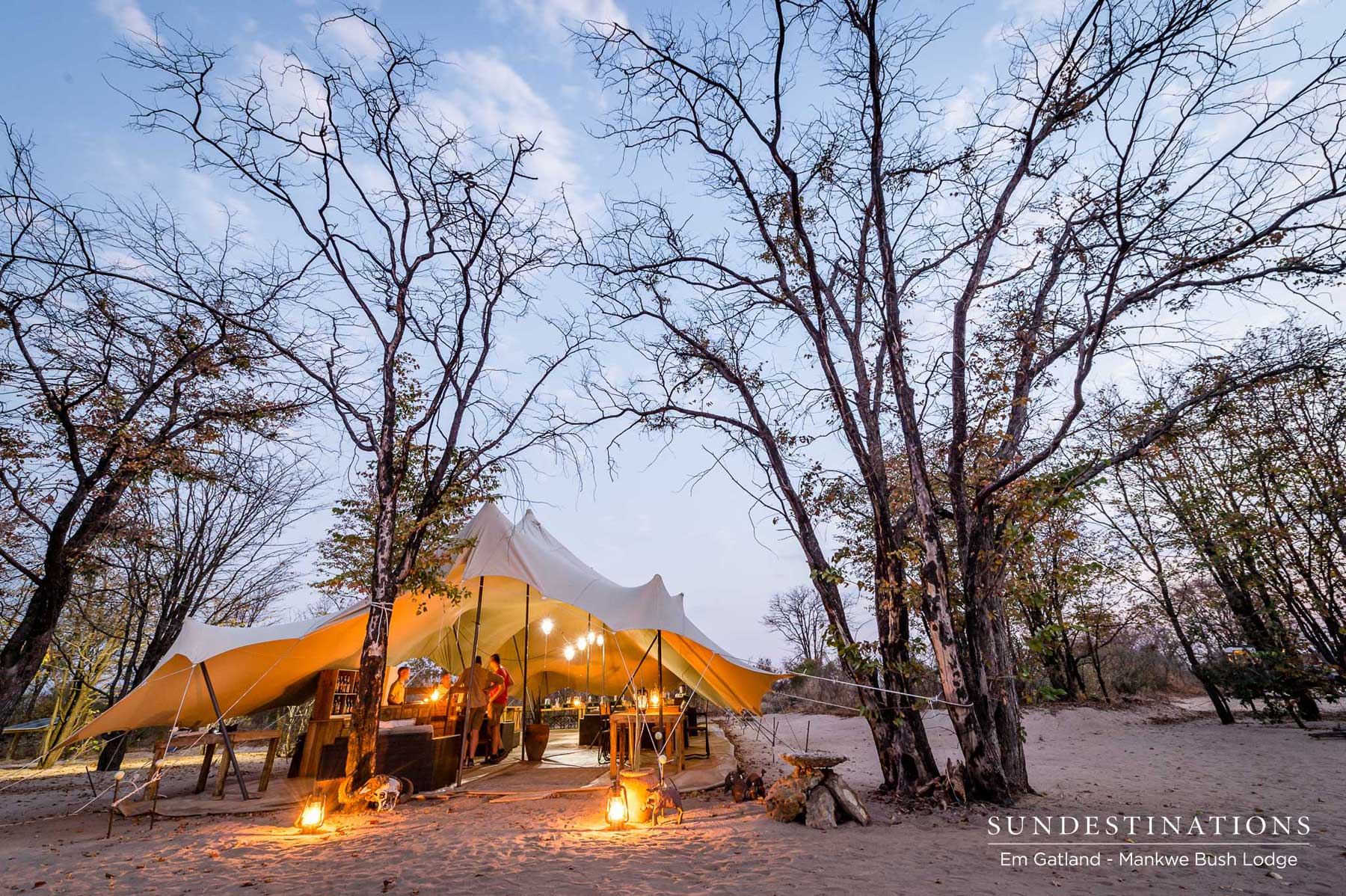 Mankwe's Mopane Wonderland and Natural Surrounds