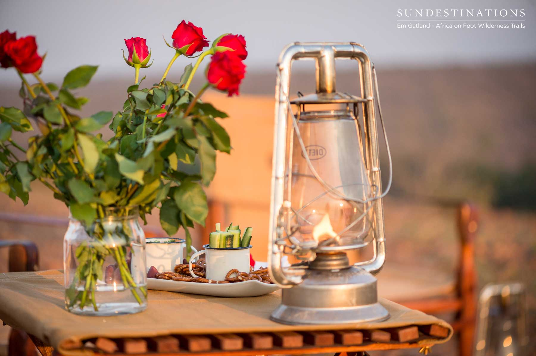 Roses and Lanterns for Romance