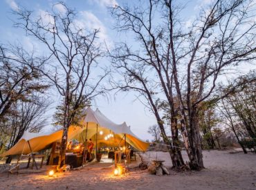 This week we see the arrival of a new lodge in Botswana, and the departure of the arid season. Greenery is sprouting and forcing its way through the bushveld, and there's new life across all our reserves. Our team in the Klaserie have been upskilling themselves when it comes to creating safari cocktails, and our […]