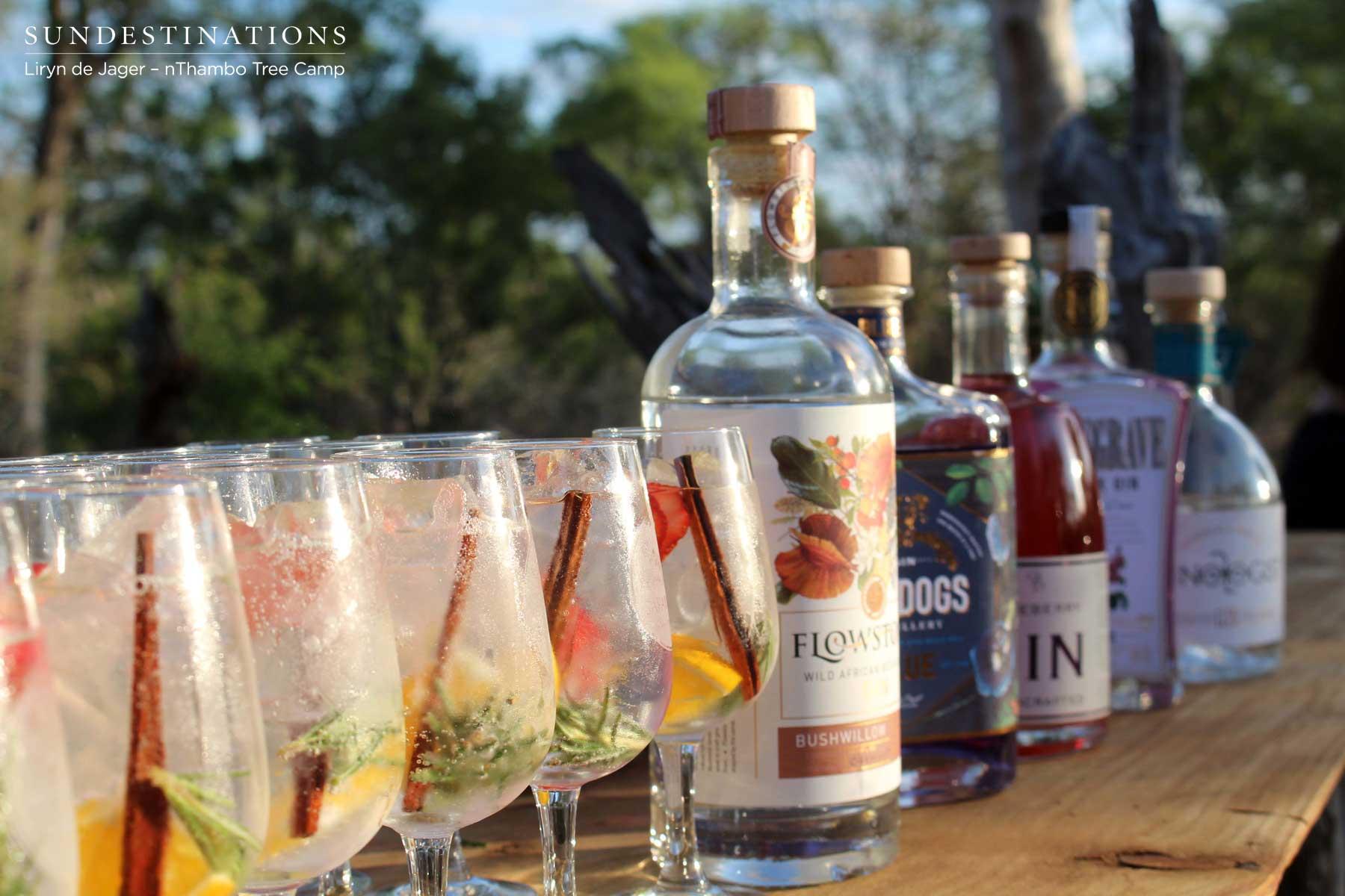 Gin Tasting at nThambo
