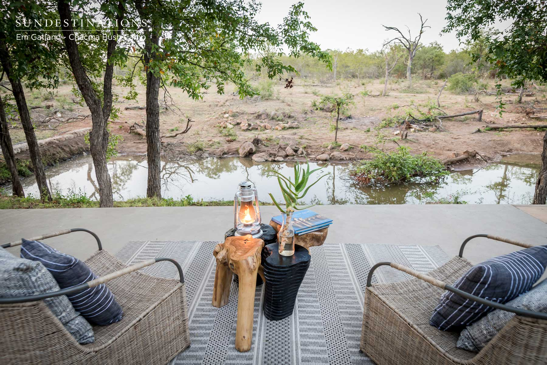 Views of the Waterhole Chacma Bush Camp