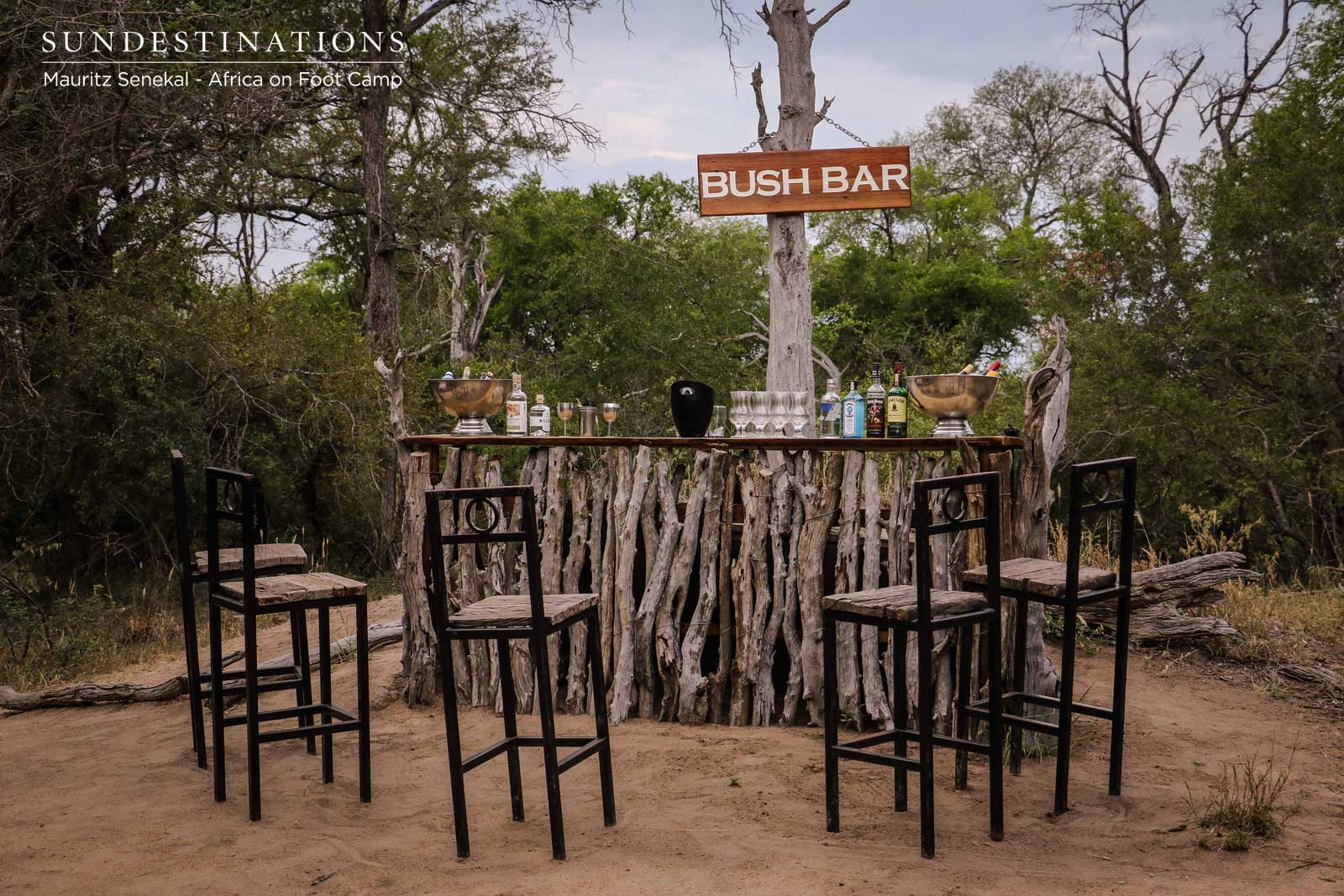 The Bush Bar : Beat of the Bushveld