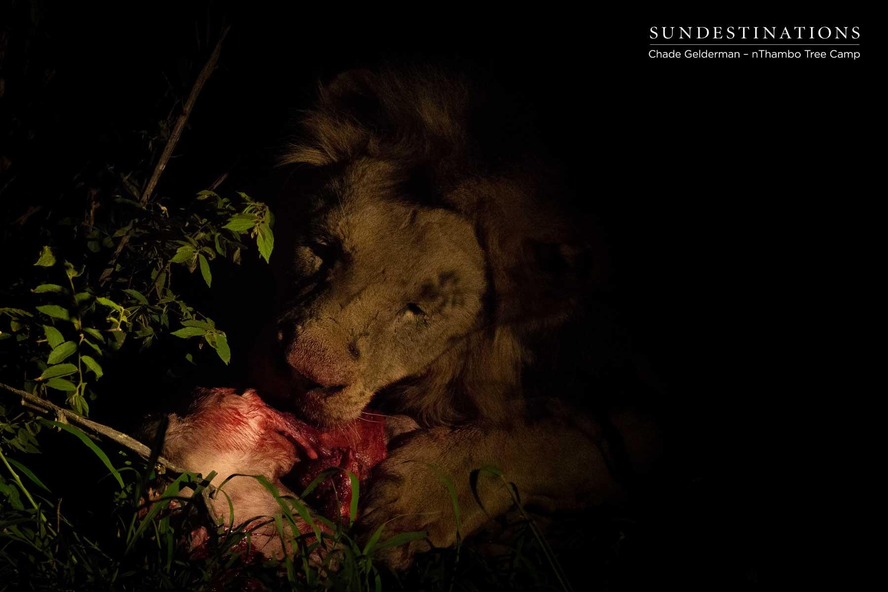 Mbirin Male on Kill