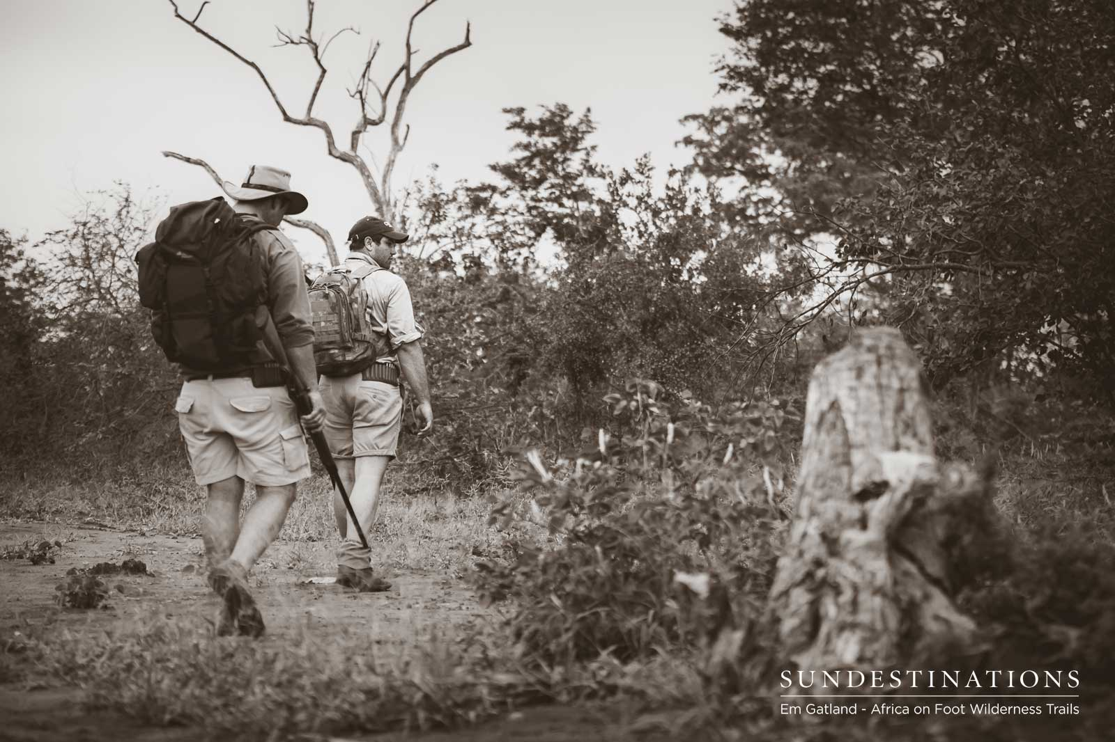 We Found Lions on Foot During Our 3 Day Kruger Walking Trail