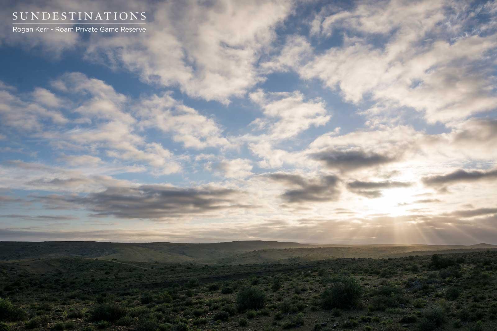The Karoo Landscape