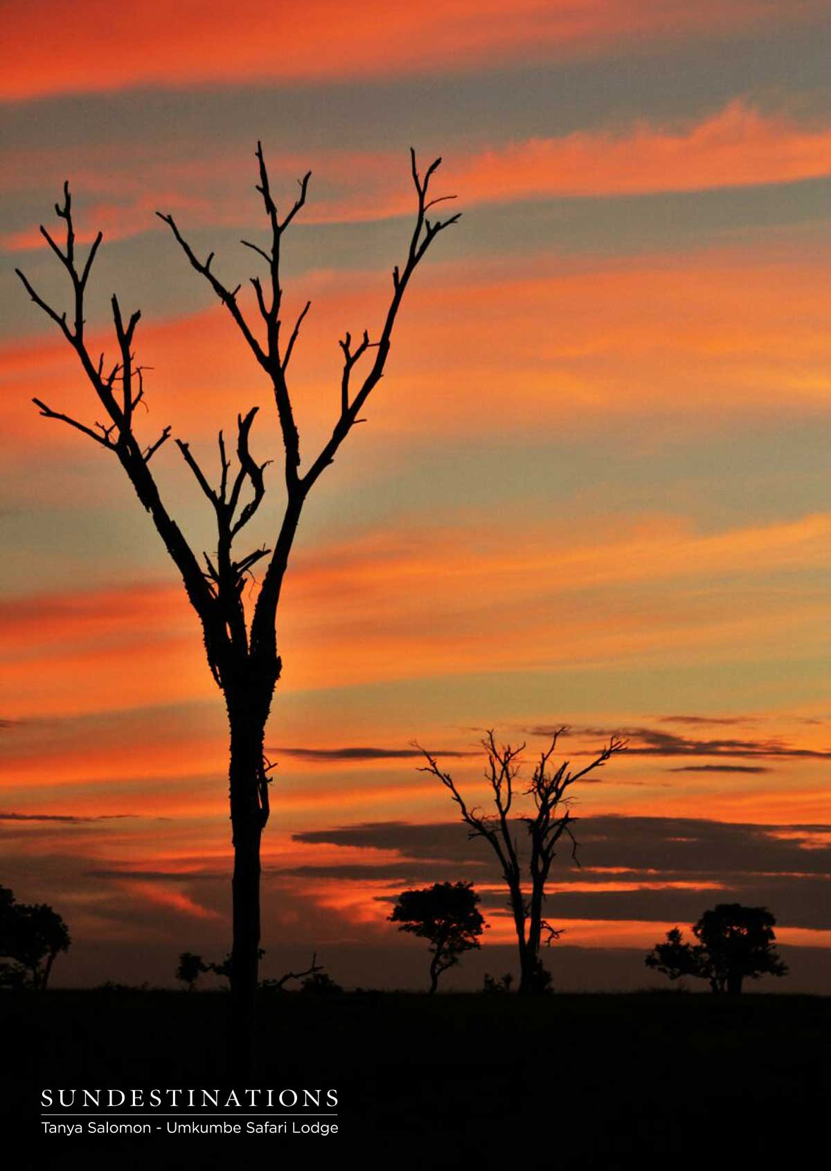Sunset Umkumbe Safari Lodge