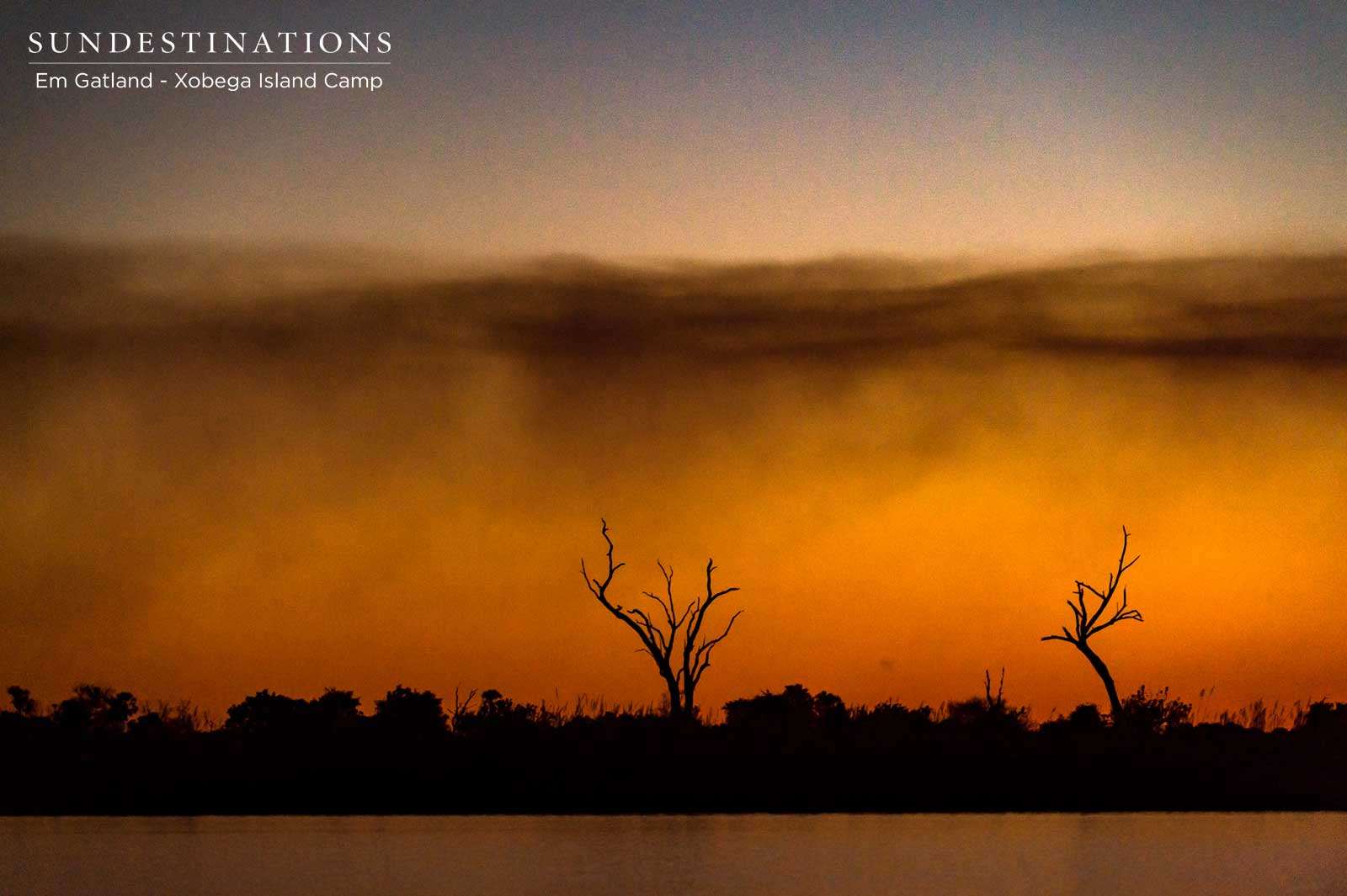 Listen to the Wild Beats of the Okavango Delta