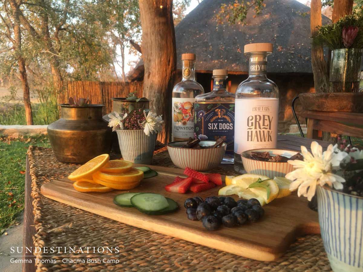 Chacma Bush Camp Gin Tasting