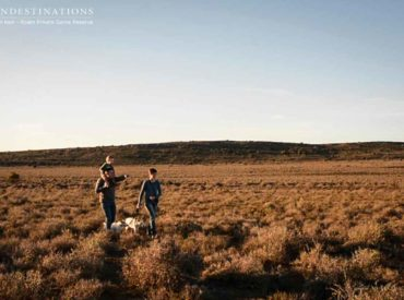 Pet-friendly destinations are few and far between, and it's always hard leaving your furry friends at home when you go on holiday. But at Roam, everyone's welcome, including Rover. What's better than visiting the picturesque plains and undulating hills of Roam Private Game Reserve in the Great Karoo? Well, visiting Roam with your pet by […]