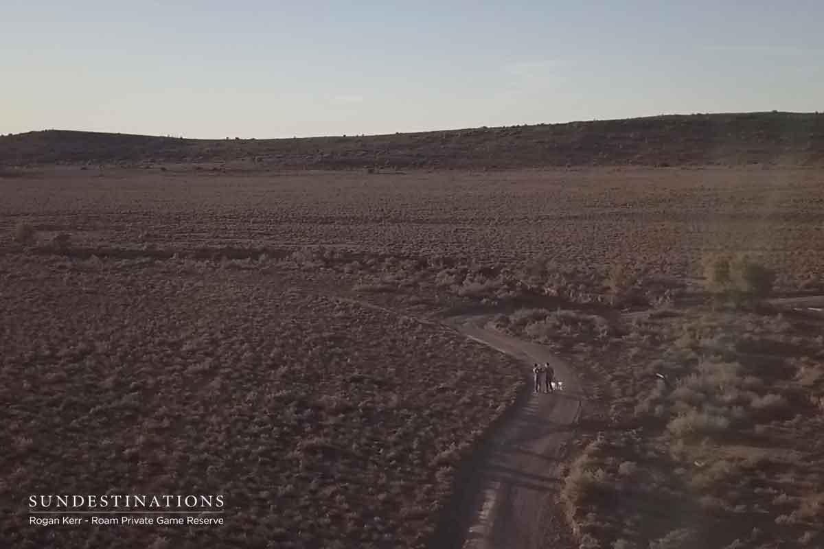 Roam the Karoo Wilderness