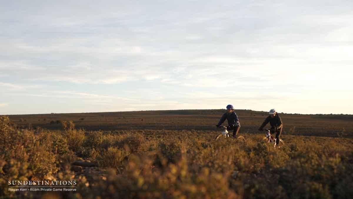 Roam Mountain Biking Bushveld