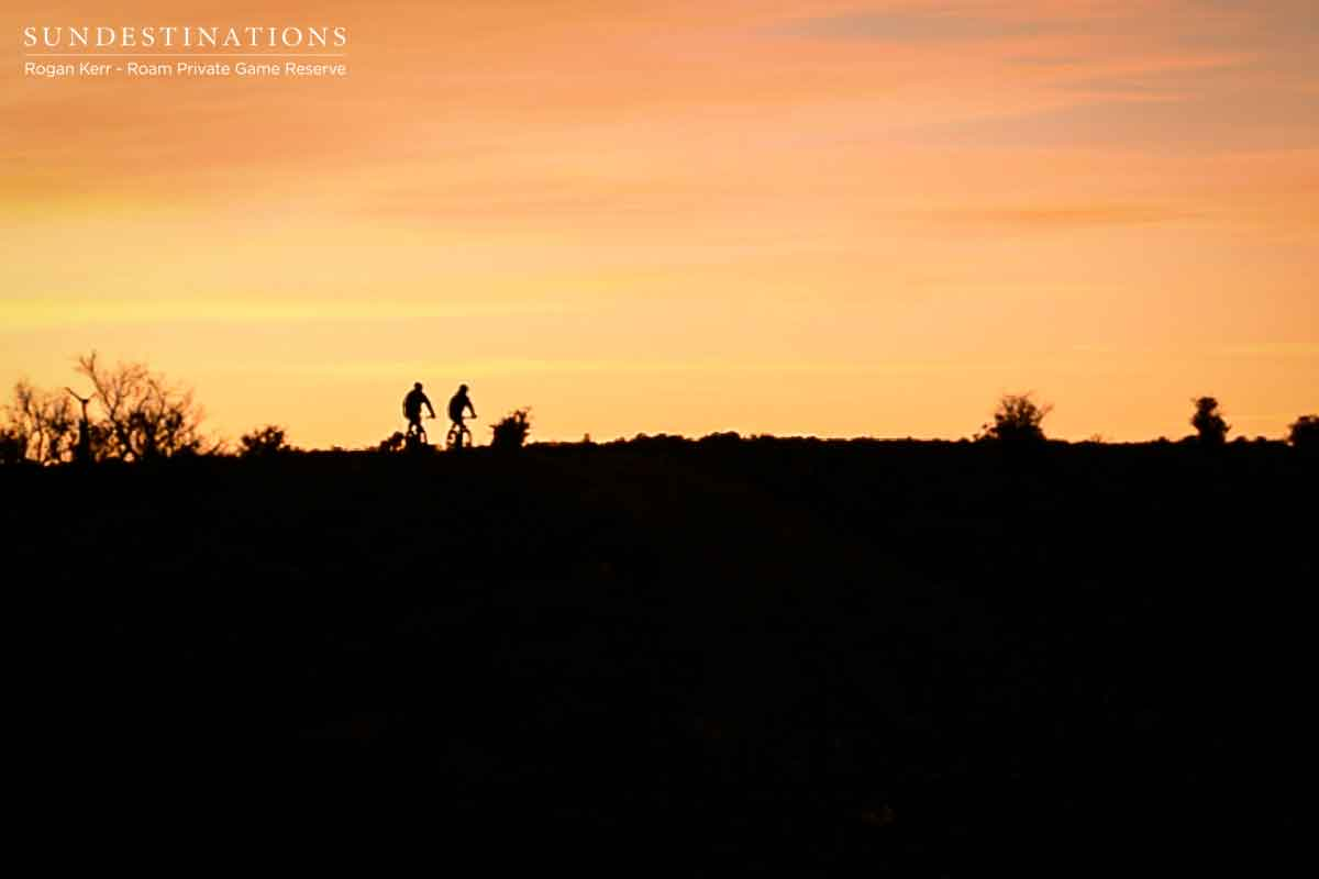 Roam Mountain Biking Sunset Horizon