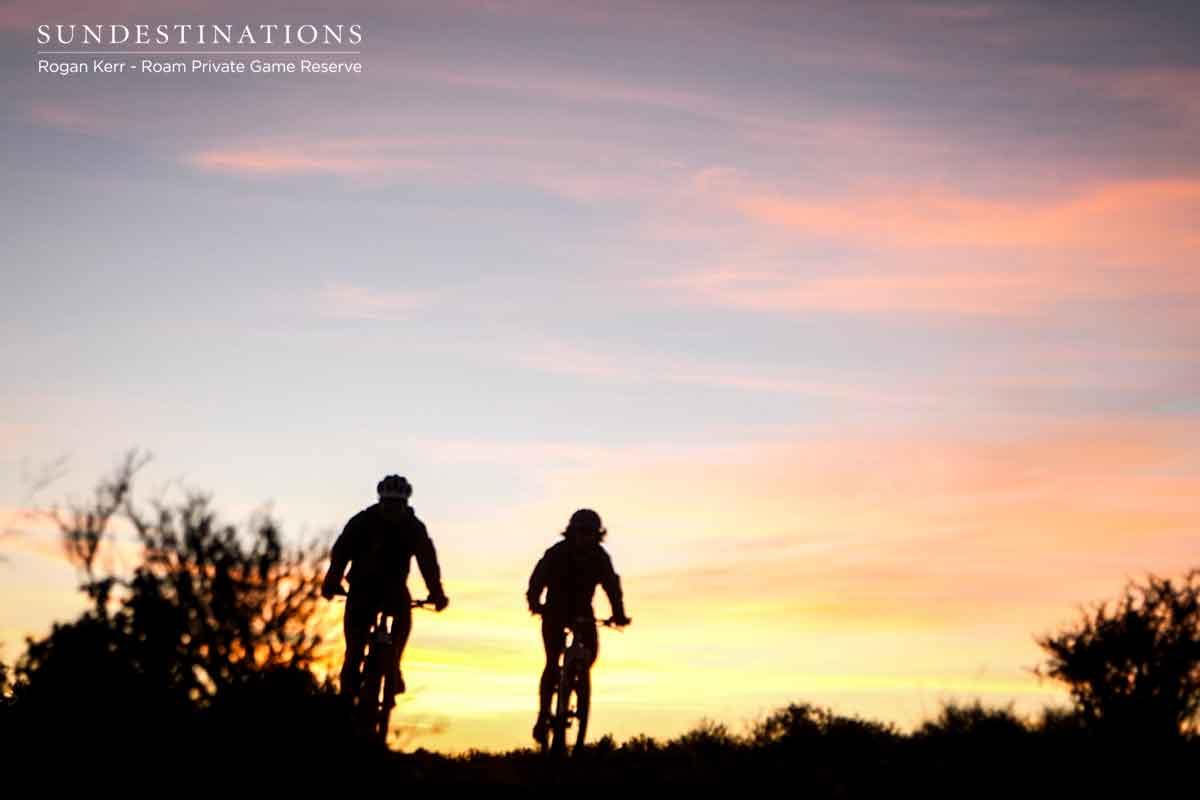 Twilight Mountain Bike Ride