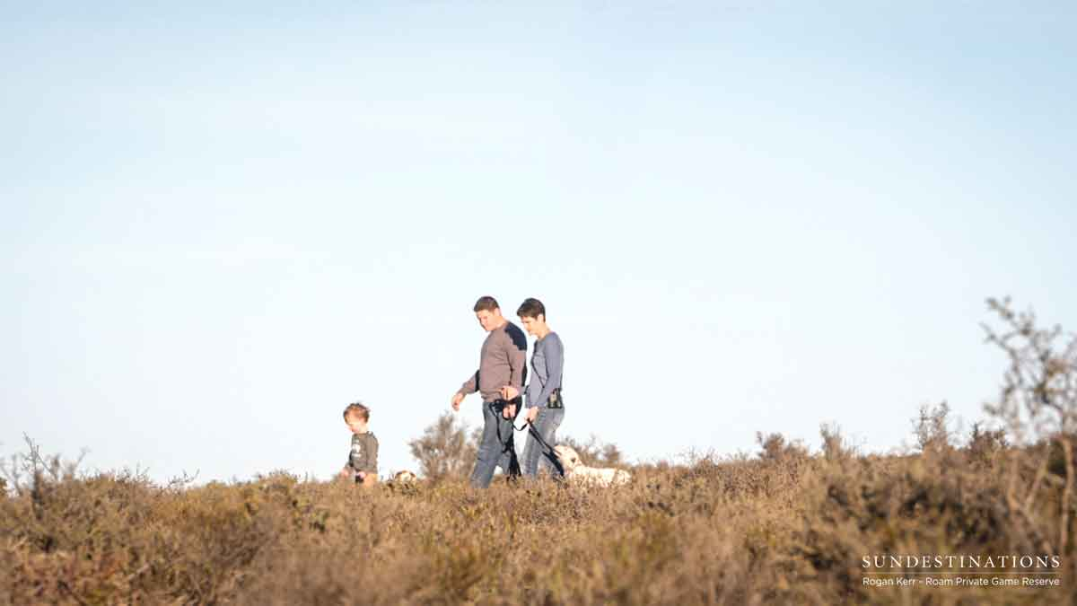Walking Dogs in Roam Private Game Reserve