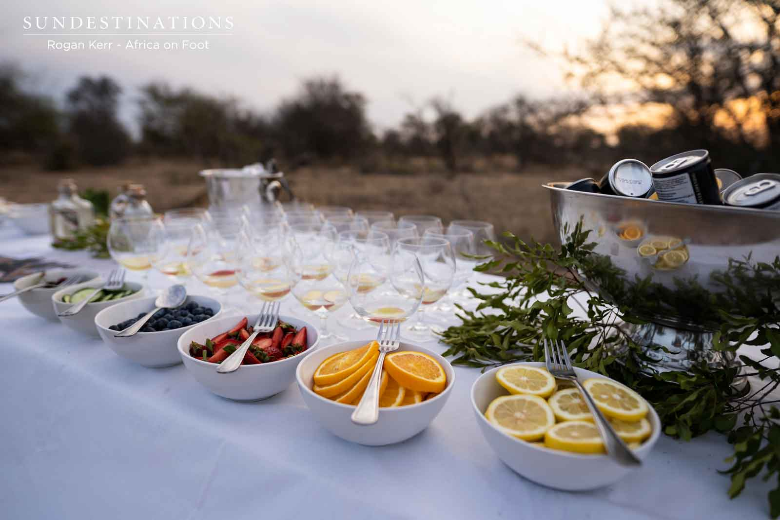 Make it a Double. Gin Tasting While on Safari in the Kruger.