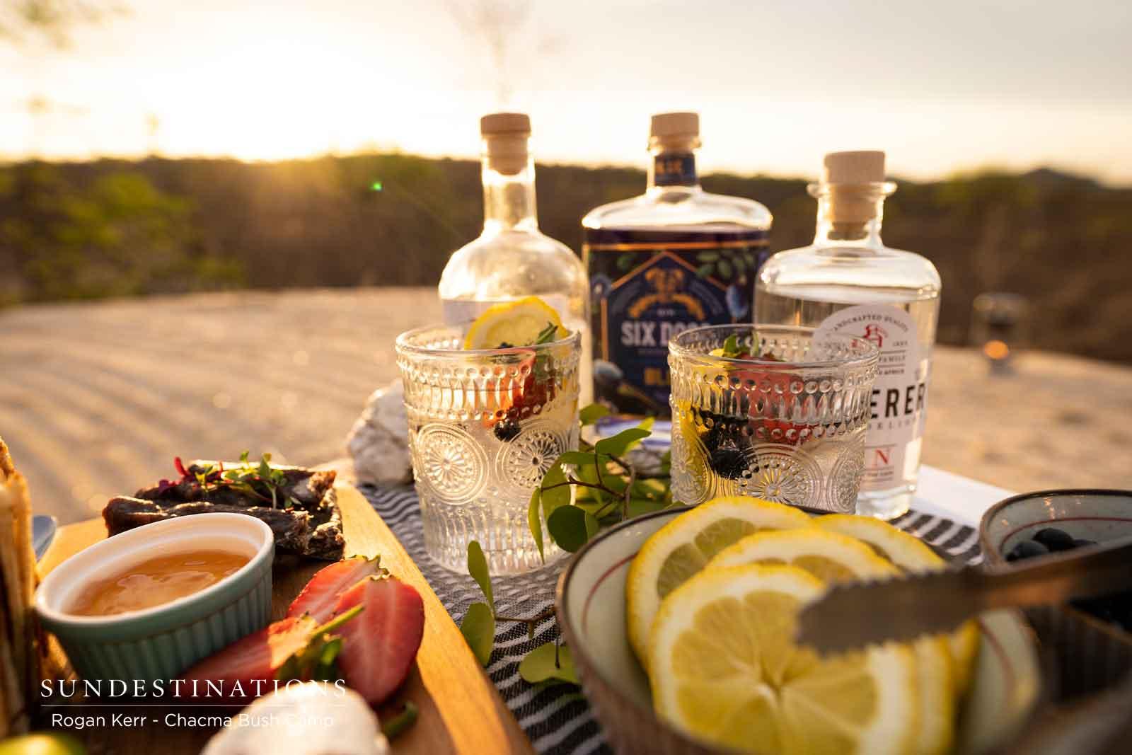 Gin Tasting and Snacks at Chacma Bush Camp