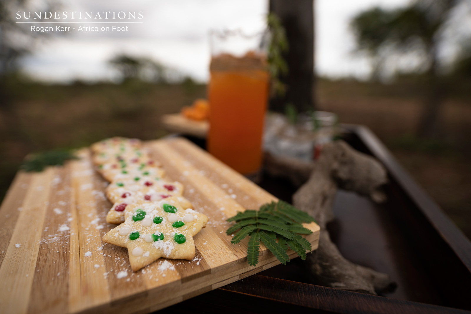 Xmas Cookies in the Bushveld