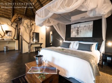 The Balule Nature Reserve is the Greater Kruger's best kept secret and its unsurpassed natural beauty makes it a worthy safari destination for honeymooners. Ezulwini Game Lodges sits in the epicentre of wildlife activity in the Balule, and each lodge has been designed in such a way to take advantage of the magnificent surrounds. Billy's […]
